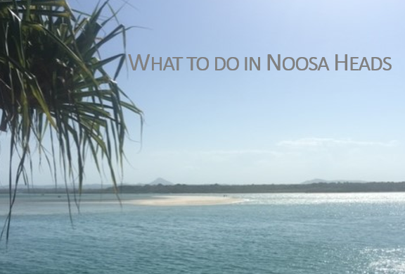 What to do in Noosa Heads, Noosaville, Noosa Junction or Tewantin